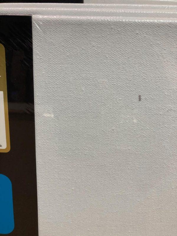 100 X 100 Blank Canvas